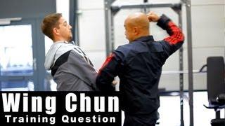 Wing Chun training - wing chun why so many energy drills? Q17