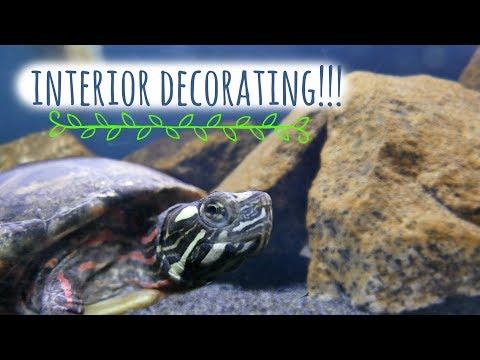 Live Plants In A Turtle Tank? - Decorating The Turtle Aquarium | Turtle 101
