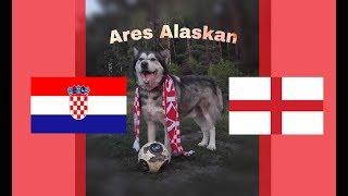🔴 ⚽ MŚ 2018 1/2 Chorwacja - Anglia  - Ares typuje, kto wygra mecz / Ares Alaskan 🔴