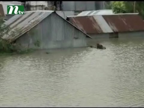 Sufferings intensified due to insistent flood in Sirajganj district | News & Current Affairs