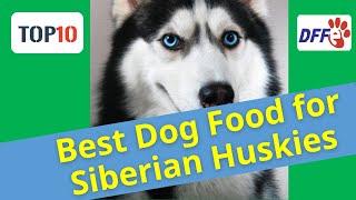 top10 Best Dog Food for Siberian Huskies✅Reviews 2021