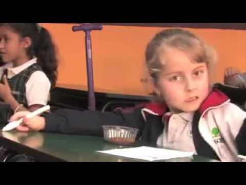 Escuelas particulares en quer taro colegios bosques youtube for Universidades sabatinas en queretaro