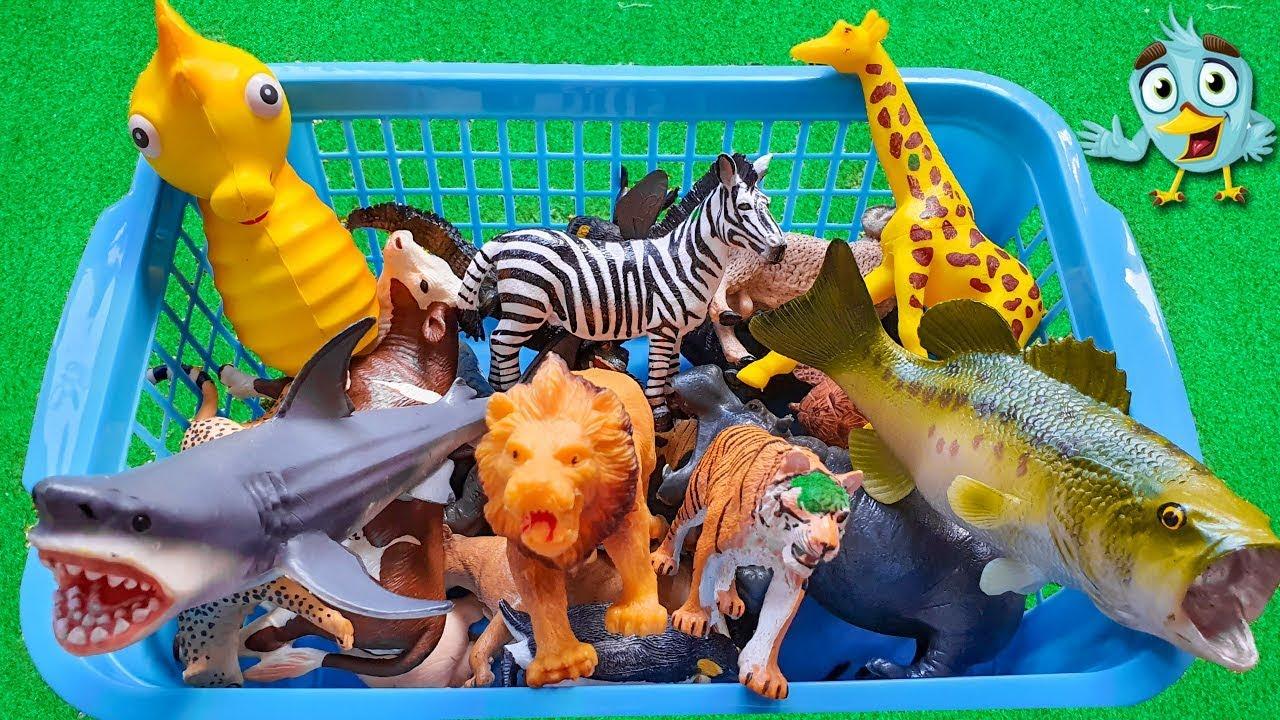 Belajar Nama Hewan Lucu - Mainan Anak - Edukasi ...