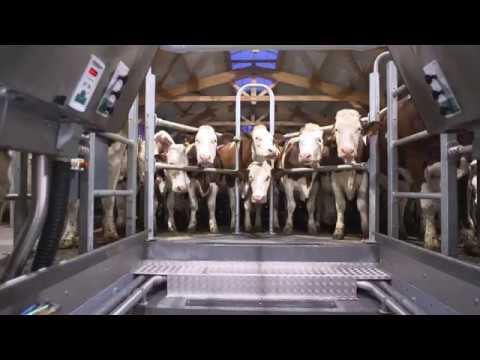 GEA Dairy Farming - GEA DairyParlor P7550