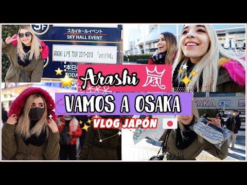 [VLOG JAPÓN ] CONCIERTO DE ARASHI 🇯🇵  | Cecie