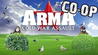 ARMA: Cold War Assault: Война чаек