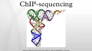 ChIP-sequencing