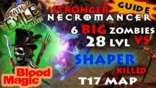 Path Of Exile 3.0 Necromancer Baron 1200 Strength 28 lvl Zombies Blood Magic - Shaper killed