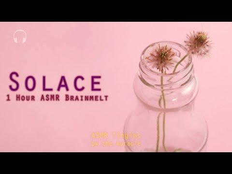 1 hour [ASMR] Experimental Brainmelt ★ Solace ★ [Binaural] [Multilayer]
