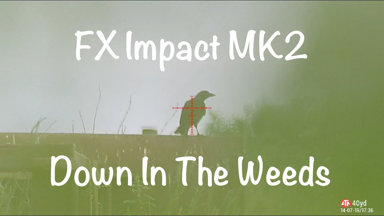 #12 FX Impact Mk2-Down In The Weeds