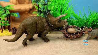 Hi kids, today, we are going to show some Schleich Papo Safari ltd ...