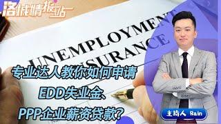 专业达人教你如何申请EDD失业金、PPP企业薪资贷款?《洛城情报站》 第119期Apr 13, 2020