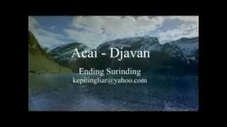 Watch Djavan Acai video