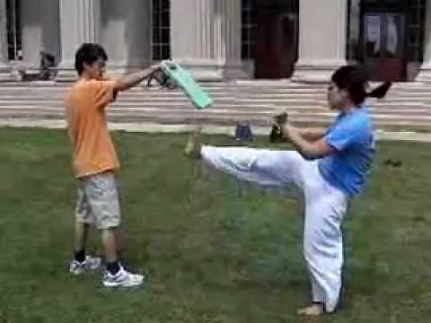 Taekwondo / Hae-Jun Kim / Ed Moriarty / Edgerton / MIT