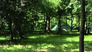 newbourne woodland camping