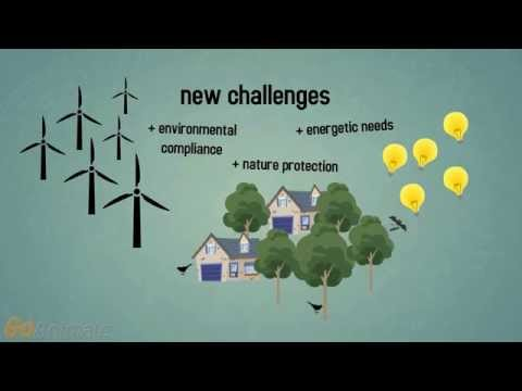 No impacts - Wind Energy and Biodiversity services