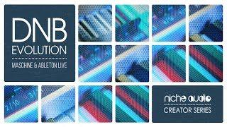 Niche Audio Creator Series - DNB Evolution