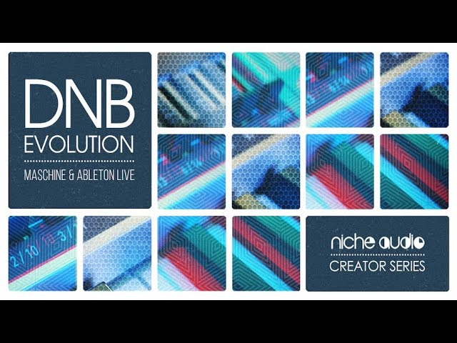Niche Audio Creator Series - DNB Evolution #1
