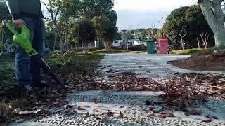 길거리에 쌓인 낙엽이 두렵지 않은 이유! 낙엽청소기 이…