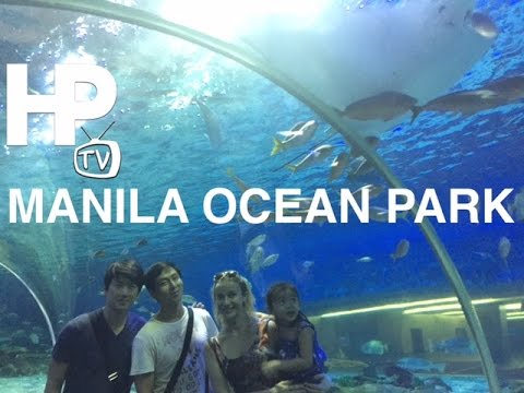 Manila Ocean Park Tour Overview Attractions Shows Qurino Grandstand Manila by HourPhilippines.com