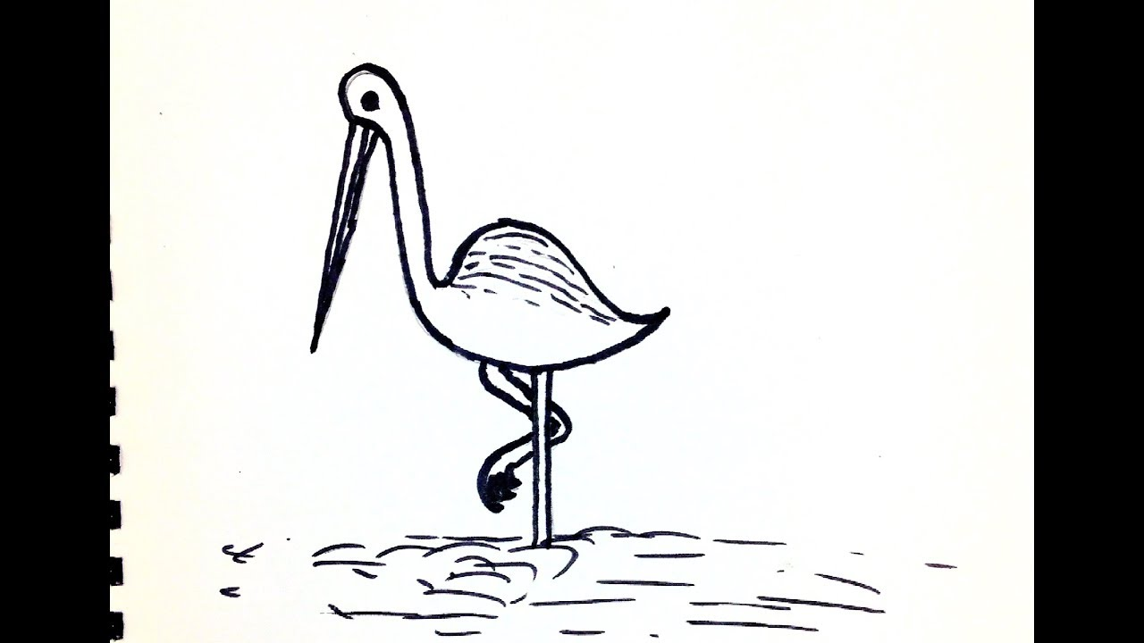 How To Drow Egret Step By Step Easy Drawing