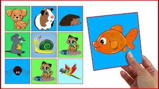 LEARN COLORS With Pets Animals Interactive Game Cards Toy PEXESO #06