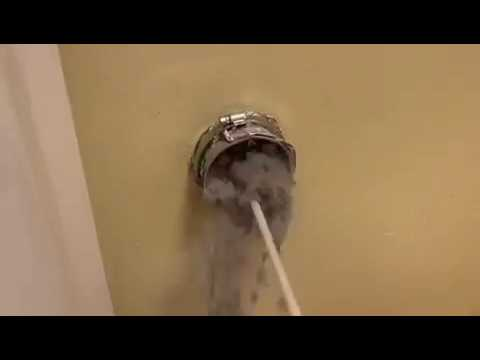 Vivs Vent Cleaning - #1 Trusted Dryer Vent Cleaning Experts in South Florida