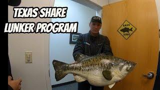 Texas Parks & Wildlife Sharelunker Program Bigger Better Bass