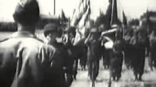 Newsreel footage: 100th Infantry Battalion