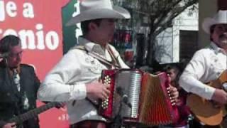 Antonio Tanguma Nieto YouTube Videos