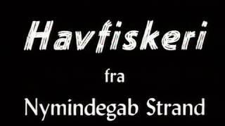 Havfiskeri fra Nymindegab Strand, 1951-53