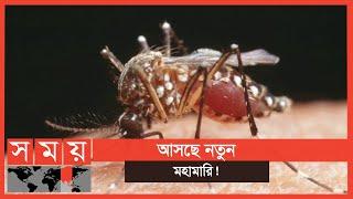 এক মশায় শত রোগ! | New Virus | Mosquito