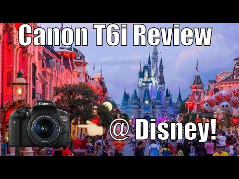 Canon 750D (T6i) Review (Disney World)