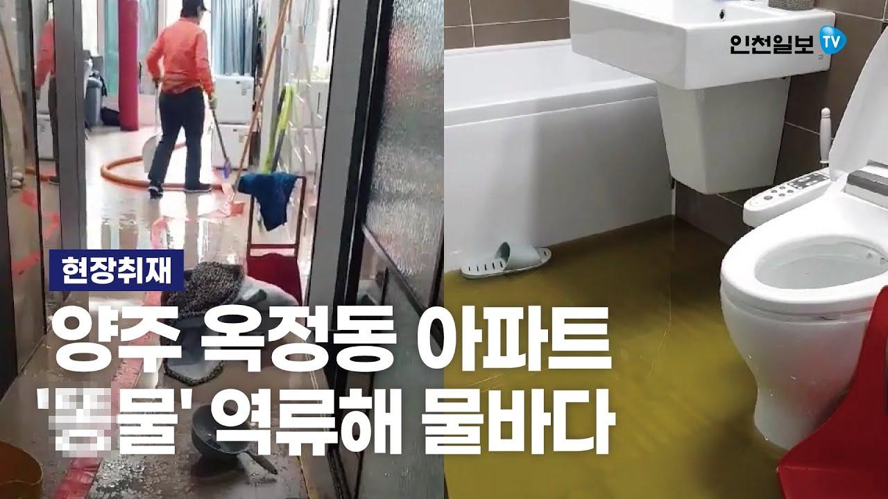 [현장취재] 양주 옥정동 아파트 '똥물' 역류해 물바다...피해 주민 분통