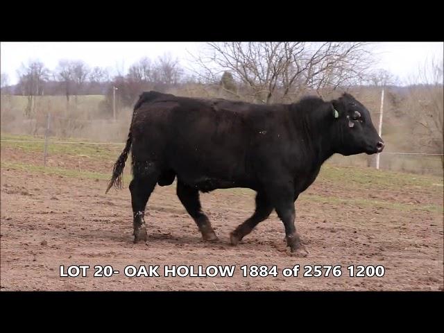 Oak Hollow Lot 20