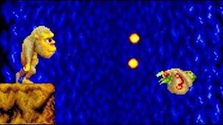 [[TAS]] JuJu Densetsu(Toki) Arcade Speedrun in 14:37 HD 1080p 60fps