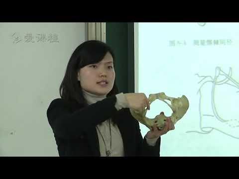 76 女性生殖系统检查(三) 华西医学中心 诊断学 Female Reproductive System Examination (3)