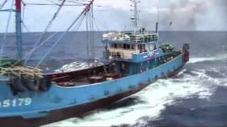 尖閣諸島中国漁船衝突事件・政府公開概要版ビデオ