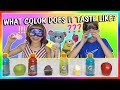 WHAT COLOR DOES IT TASTE LIKE? | CHALLENGE | We Are The Davises