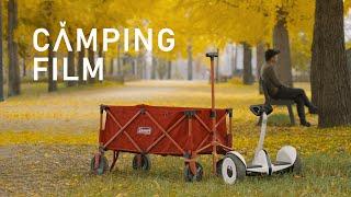 강천섬 솔로 캠핑, 노란 카펫, 단풍과 함께했던 캠핑,…