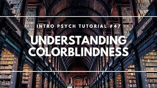Understanding Colorblindness (Intro Psych Tutorial #47)