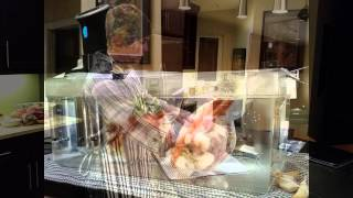 Sous Vide Cornish Hen with Root Vegetables