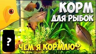 видео Сухой корм для рыб