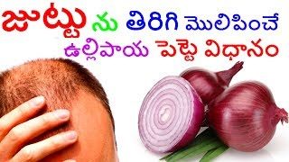 🌰How To Use Onion Juice For Hair Regrowth | Dandruff | Hair fall Control |balding |Telugu