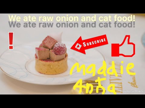 Part 2 special surprise! The weird food combo challenge! Raw onion and cat food?