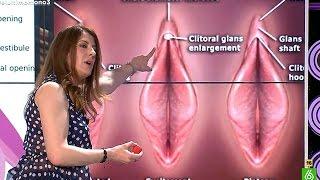 Repeat youtube video Valérie Tasso explica cómo estimular un clítoris - El Último Mono