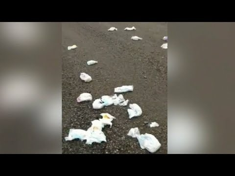 N.S. couple tired of dirty diaper dumping on their property