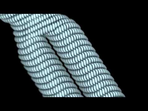Structure Of A Chromosome And Zoom In To DNA