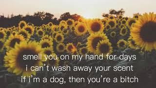 Butterfly - Weezer {Lyrics}