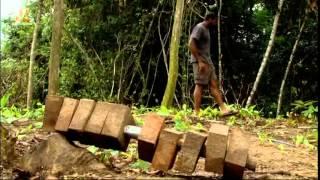 Золотоискатели Сезон:1 Серии: 6 / Бамазонка